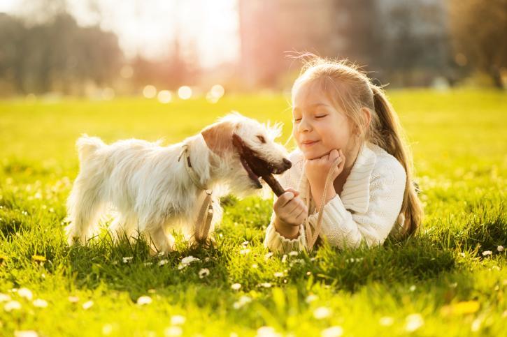 Дети и животные: такой важный друг - Летидор